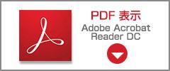 公約PDF