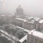 国会議事堂も雪化粧となりました。