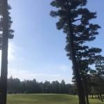 地元にあります相模原ゴルフクラブにて、恒例のゴルフ大会を開催中です。