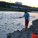 夕方より1時間勝負で鮎釣りに行ってきました。