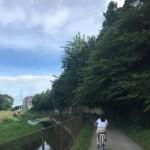 境川 サイクリング