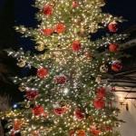 本会議が終わり忘年会まわりをしておりますが、街の中はすっかりクリスマスシーズンなんだなど感じた日です。
